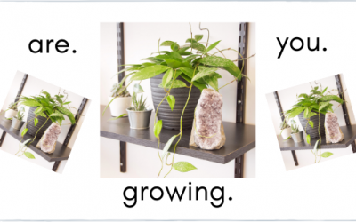 """""""If You Aren't Growing, you're Dying"""""""
