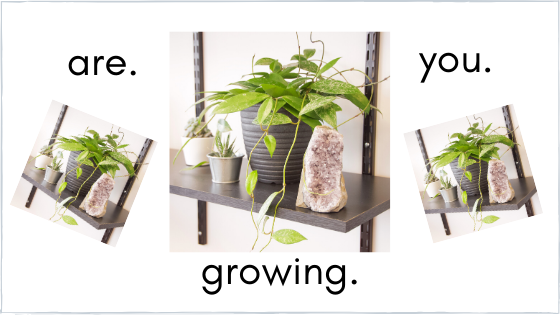 """If You Aren't Growing, you're Dying"""